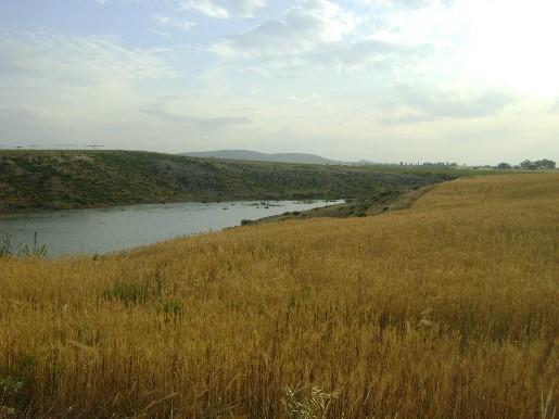 Terrain agricole a vendre tunisie for Container sur terrain agricole
