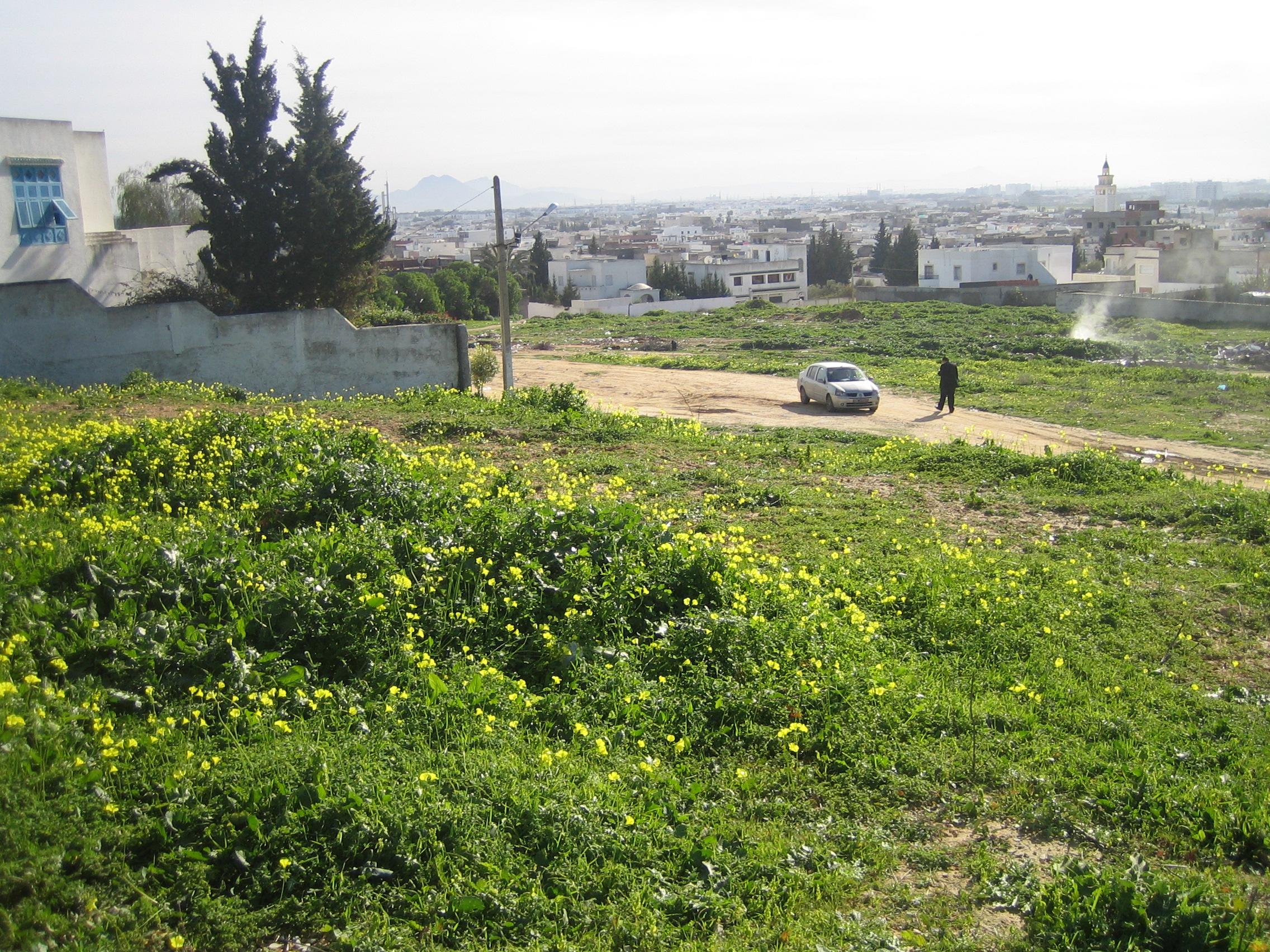 Vente achat terrain en tunisie vendre et acheter terrains for Acheter une maison en tunisie pas cher