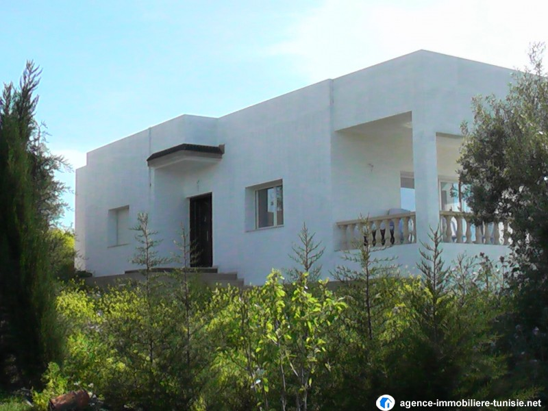 Villa neuf a manouba for Architecture maison tunisie