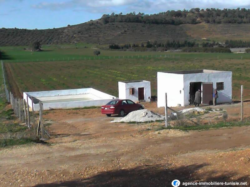 Immobilier vende achat location vente terrain maison en for Achat terrain maison